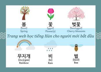 trang web học tiếng Hàn cho người mới bắt đầu