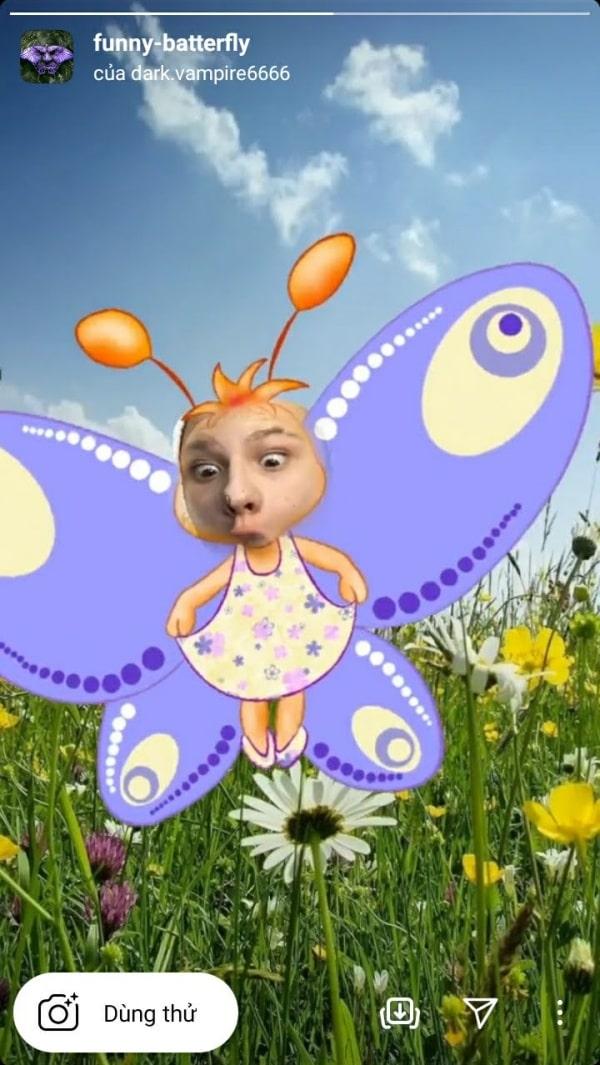 Filter Funny-batterfly