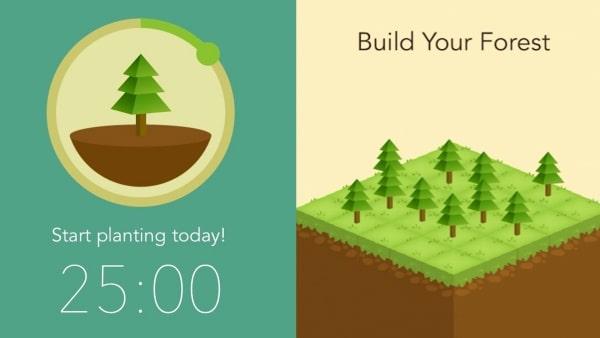 Cùng Forest xây dựng khu rừng cho riêng mình
