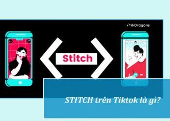 Stitch là gì?